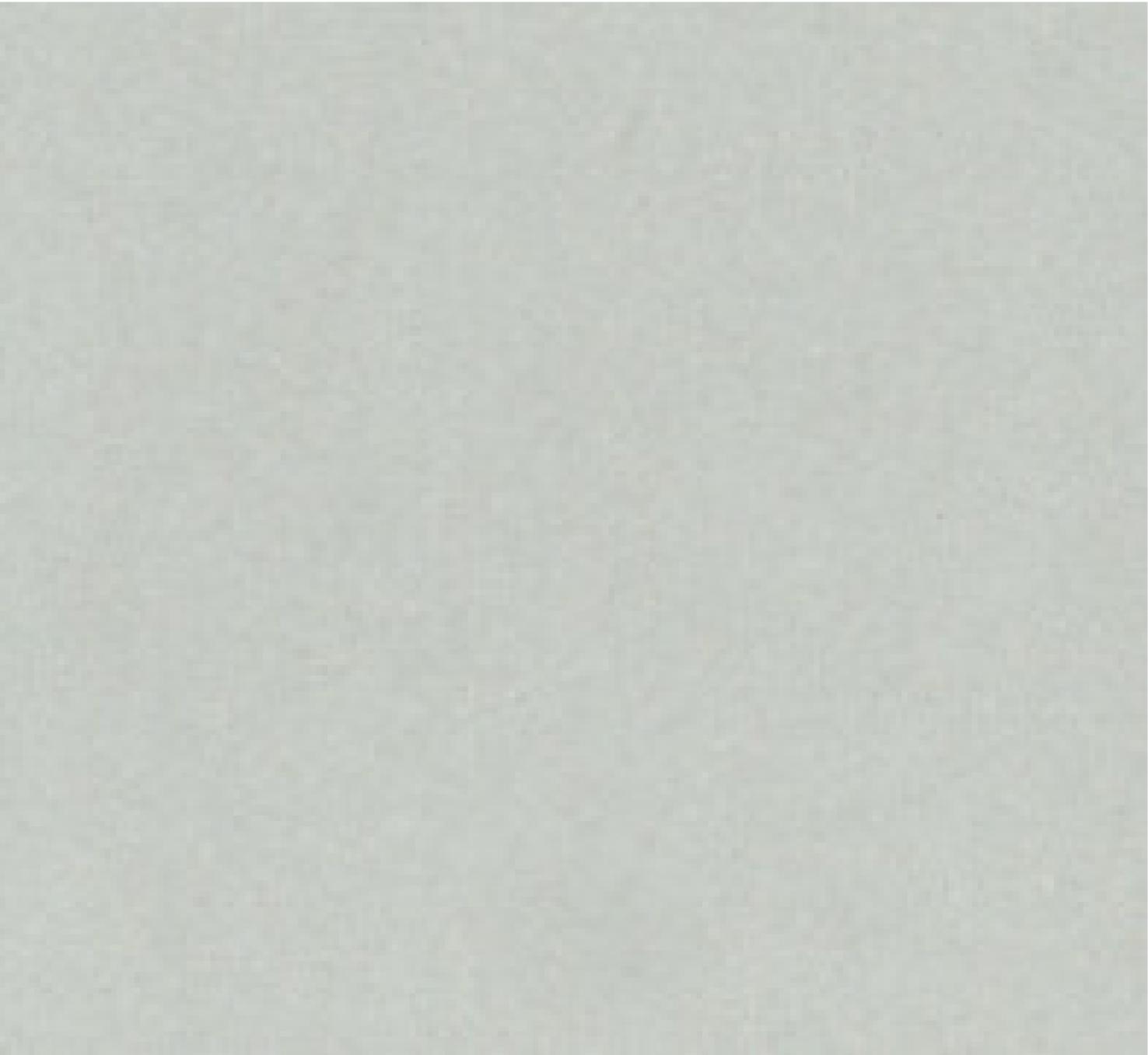 Simplicity Pale Grey 911